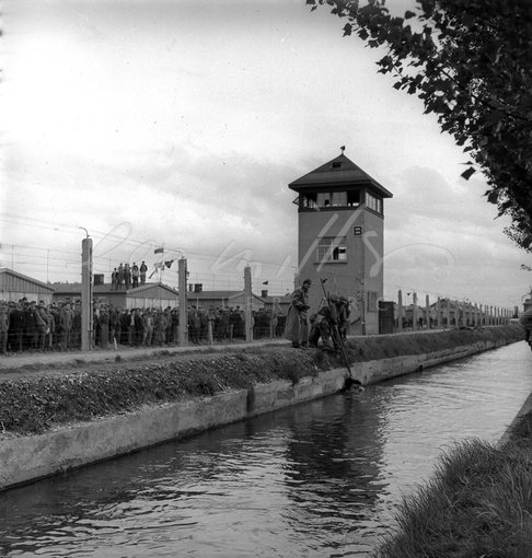 Dead guard in canal, concentration camp, Dachau, Germany 1945 by Lee Miller